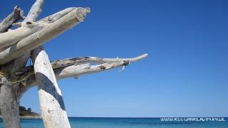Korsika042014_048